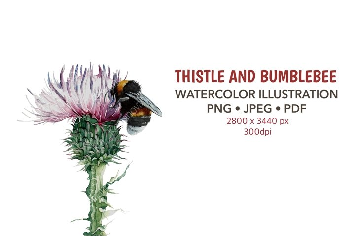 Thistle and bumblebee Watercolor clipart Sublimation design