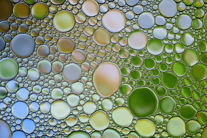 Multicolor water oil bubbles texture