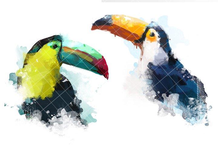 Watercolor Toucan birds