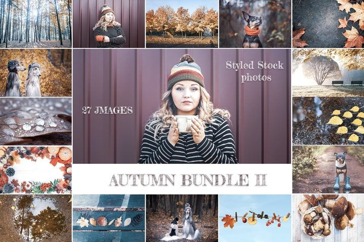 Autumn Bundle II