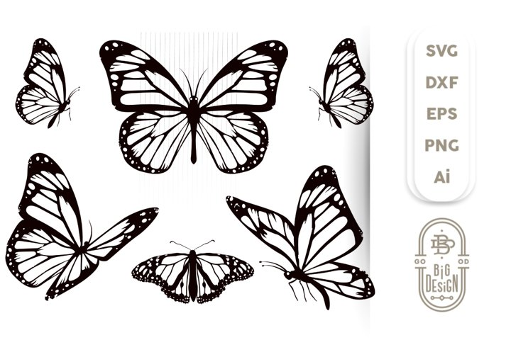 Butterfly Svg Bundle - 5 Monarch Butterfly Svg Cut Files
