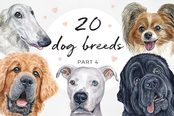 PART 4. Watercolor illustration set DOG breeds. Cute 20 dogs