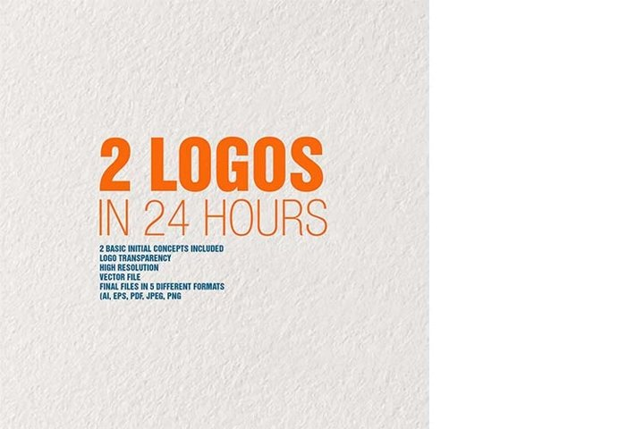 Professional Logo Graphic Designer Logo Design Custom Logo