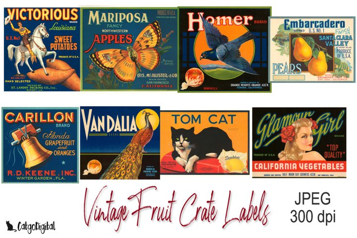 Vintage Fruit Crate Labels JPEG files