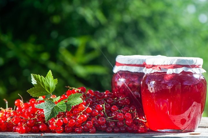 Red, juicy berries of red currants and jars of berry jam