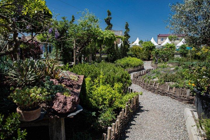 Beautiful path in the garden