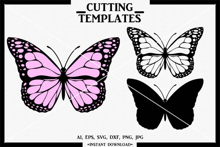 Layered Butterfly, Butterfly, Silhouette Cameo, Cricut, SVG