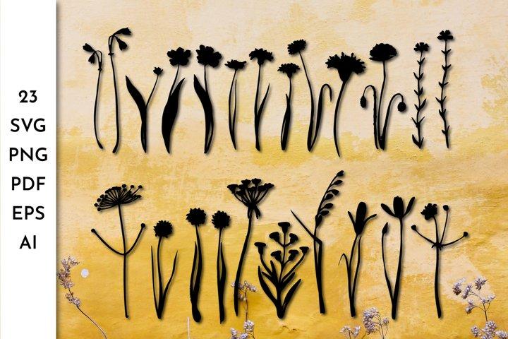 Flowers SVG. Flowers PNG. Floral SVG. Greenery Herbs. Rustic