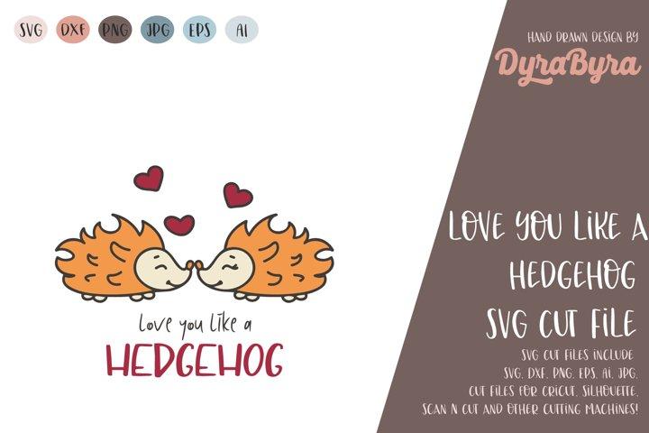 Love you like a Hedgehog / Valentine / Valentines day svg