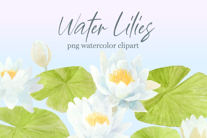Waterlily Floral PNG Watercolor Clipart, Botanical Art