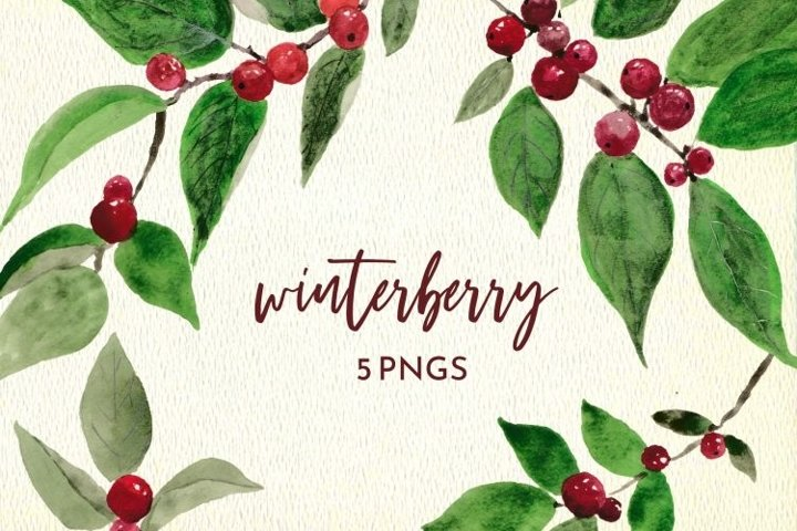 Winter Berry Christmas Holiday PNG Clipart Set