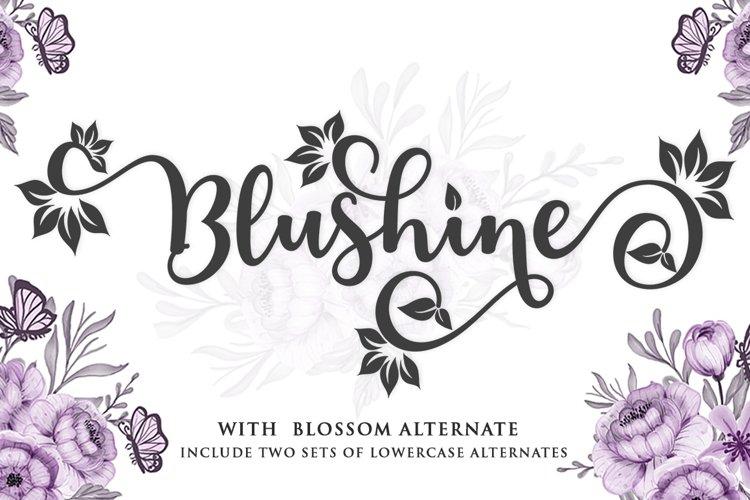 Blushine Script example image 1