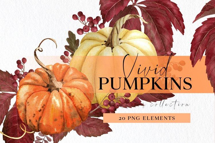 Watercolor pumpkin clipart set with png autumn arrangements