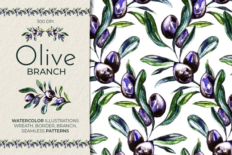 Olive Branch Watercolor & Patterns Collection