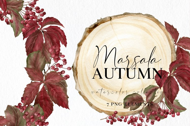 Watercolor fall clipart in marsala color with berries leaves