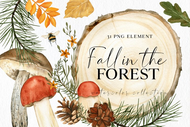 Fall forest mushrooms clipart, watercolor autumn composition