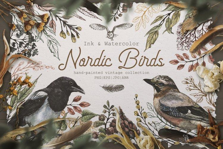Nordic Birds Ink & Watercolor Set