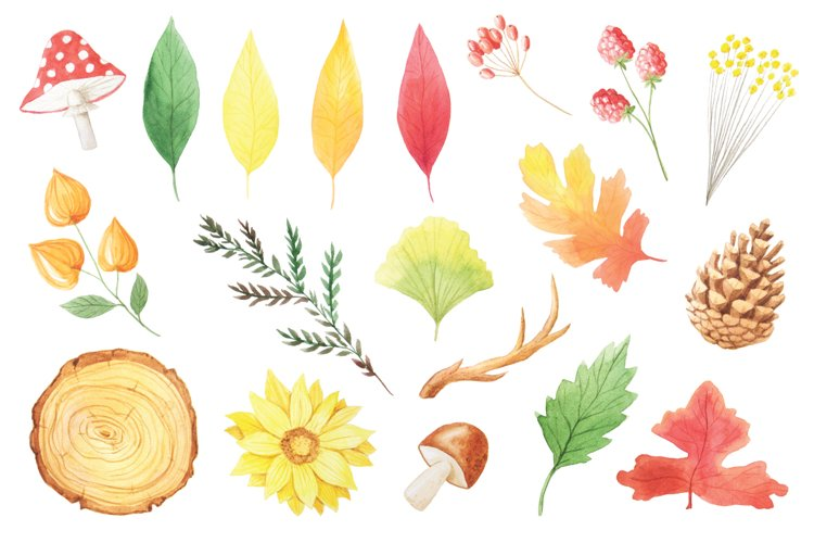 The Watercolor Autumn Collection  - Free Design of The Week Design1