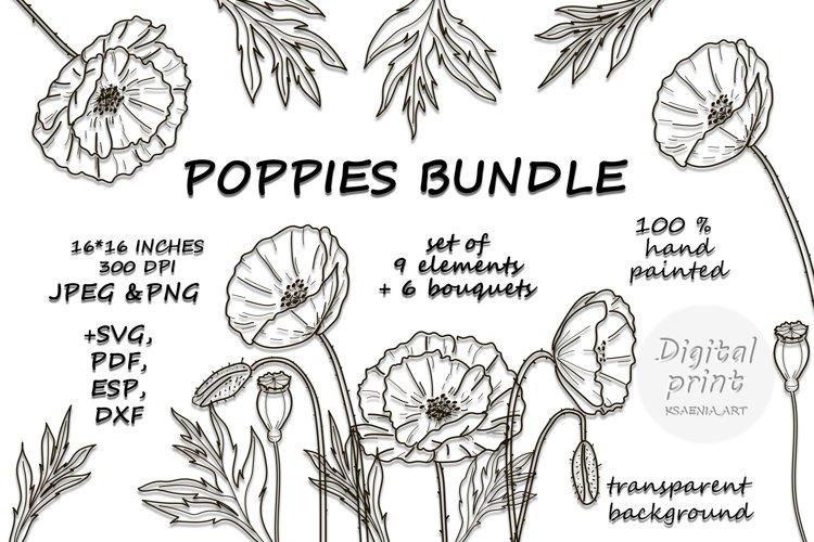 Poppy Svg bundle Png Dxf Eps Jpg Pdf Poppies Wildflowers set