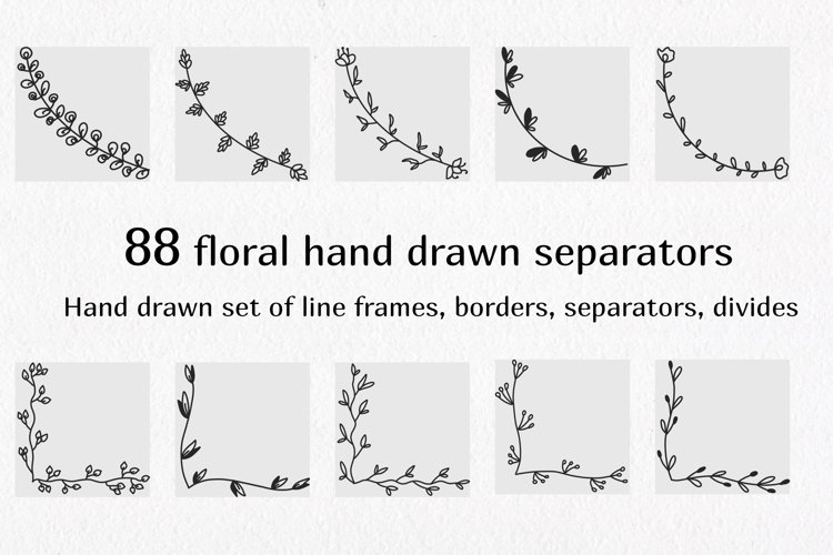 Separators and text dividers. Hand drawn floral and herbal e example image 1