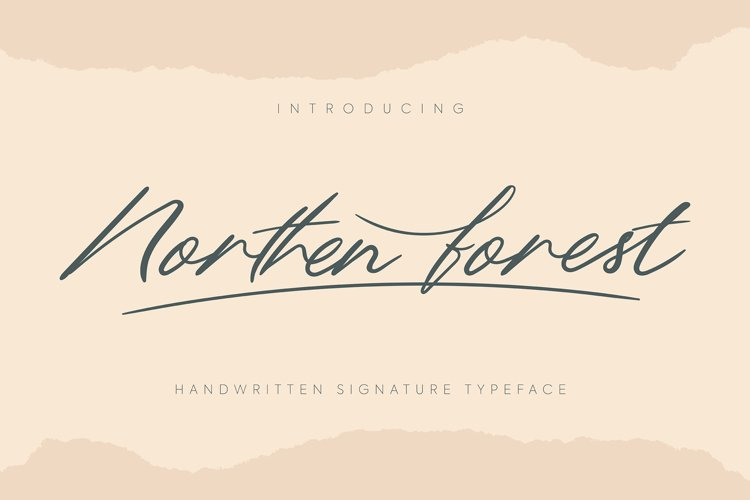 Northern Forest   Handwritten Signature Typeface example image 1
