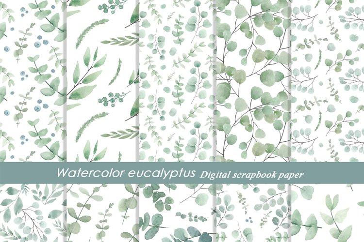 Watercolor eucalyptus patterns, Seamless eucalyptus print