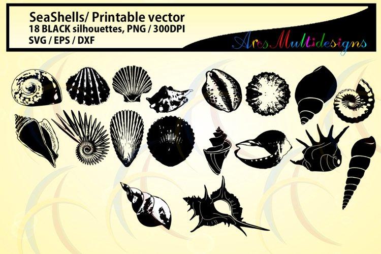 SeaShells silhouette / Sea shell /SVG / EPS / DXf vector sea shell / PNG / snails silhouette / Personal use, commercial use / High quality