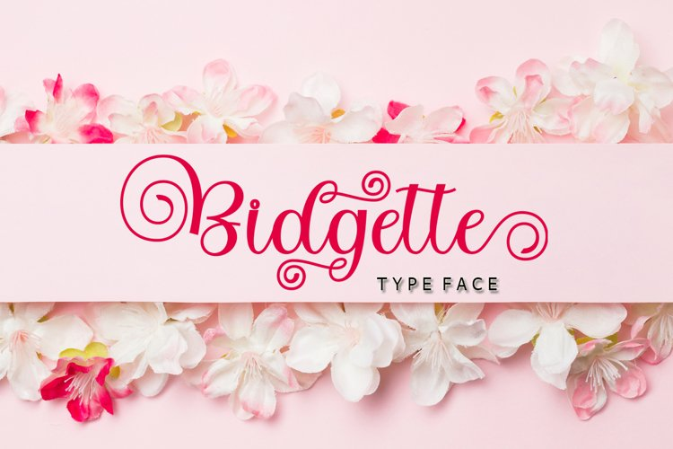 Bidgette example image 1