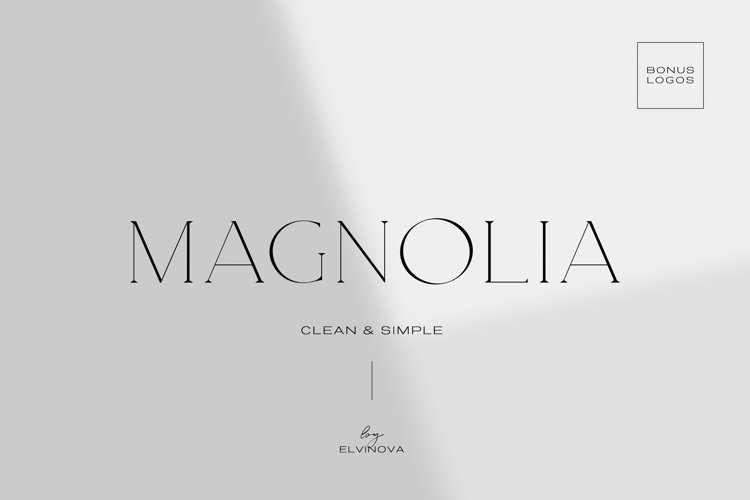 Magnolia. Modern Serif Font example image 1