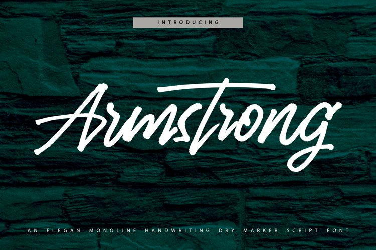 Armstrong - Monoline Handwriting Script Font example image 1
