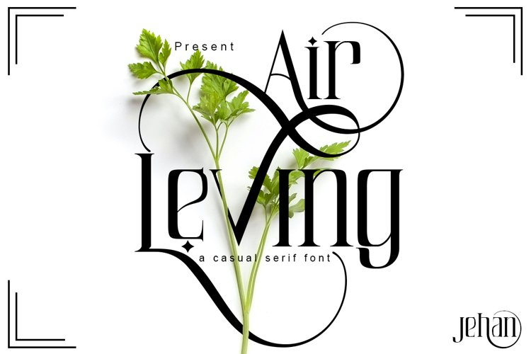 Air Leving example image 1