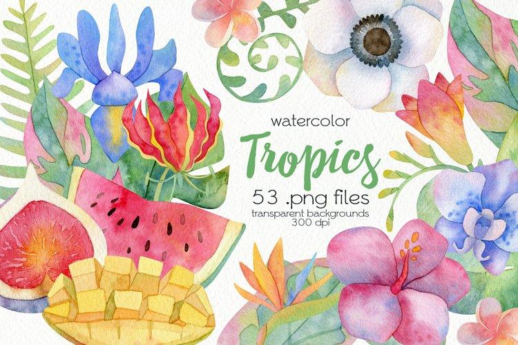 Watercolor Tropics Clipart example image 1