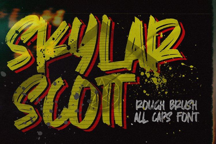 Skylarr Scott - Handwritten Brush font example image 1