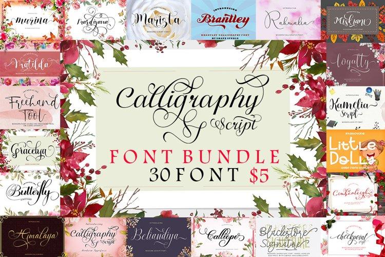 Calligraphy Script Font Bundle