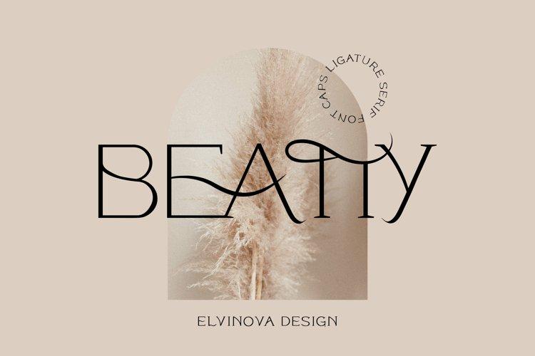 Beatty Modern Classy Font example image 1