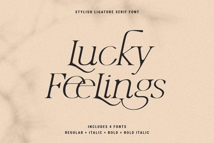 Lucky Feelings - Serif Font Family example image 1
