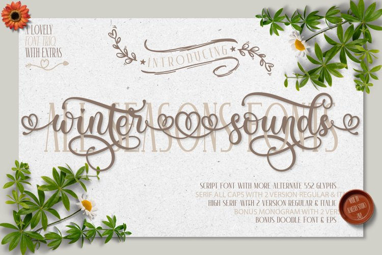 Winter Sounds   All Season Fonts example image 1