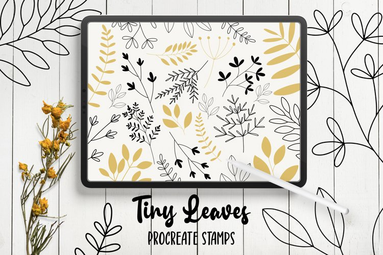 Hand Drawn Leaves Procreate Stamp Brushes example image 1
