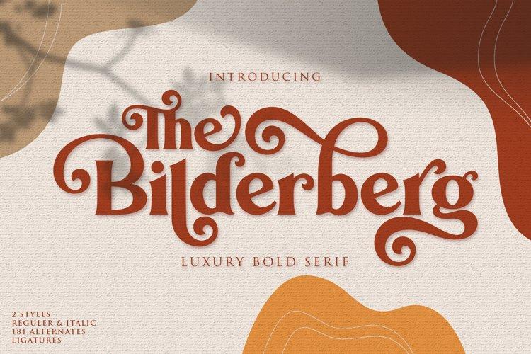 Bilderberg | Luxury Bold Serif example image 1
