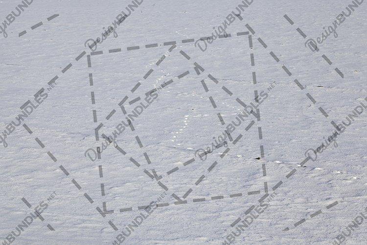 Animal footprints in snow example image 1