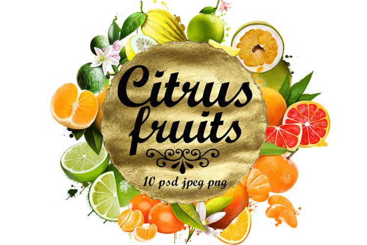 Fruits digital art collection of 10 illustrations