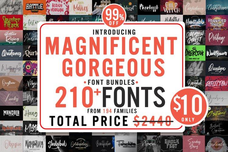 Magnificent Gorgeous Fonts Bundle - All Collection