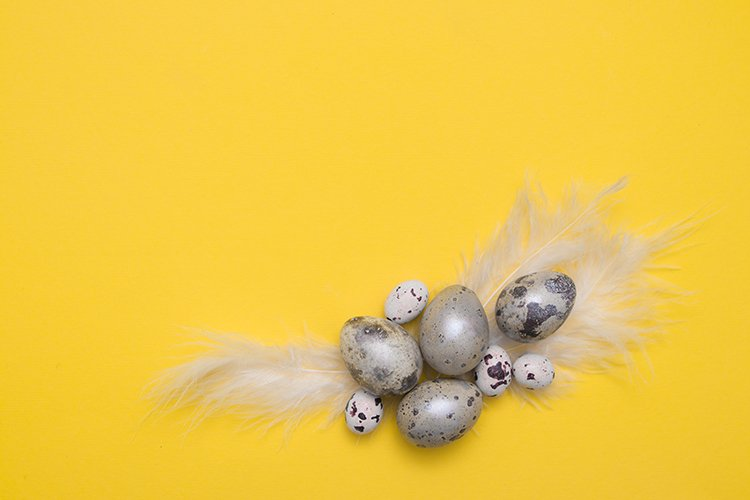 Eggs and feathers on yellow paper background copy space example image 1