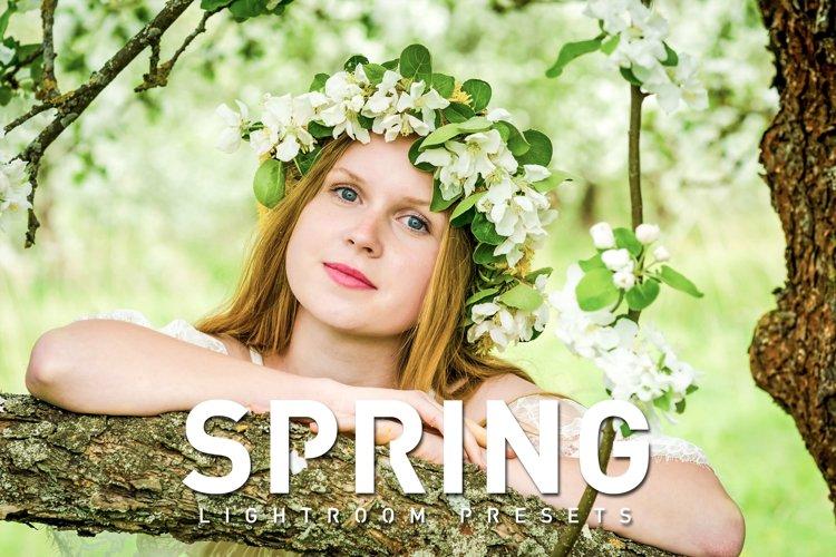 50 Spring Lightroom Presets example image 1