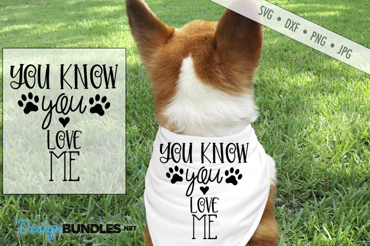 You Know You Love Me SVG | Dog Scarf SVG | Paw Print SVG example image 1