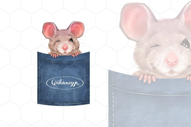 Little mouse winks example image 1