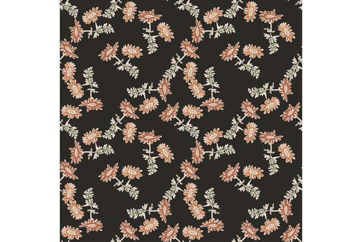 Chrysanthemum flowers drawing, bloom in brown colors, floral
