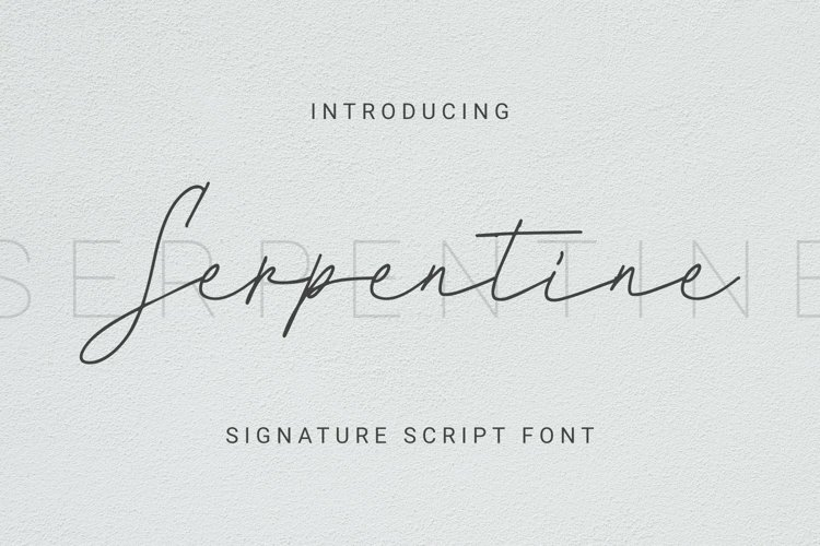 Web Font Serpentine Font example image 1
