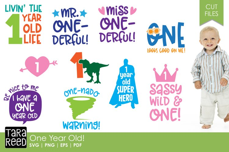 One Year Old SVG and Cut Files for Crafters