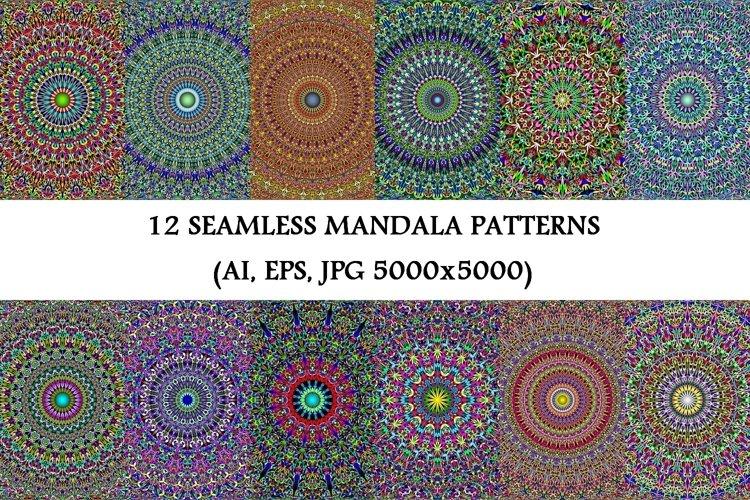 12 Floral Mandala Seamless Patterns - AI, EPS, JPG 5000x5000 example image 1